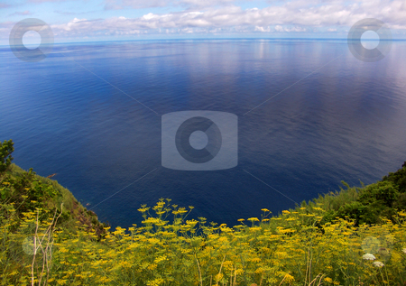 Ocean stock photo, Land and the ocean by Rui Vale de Sousa