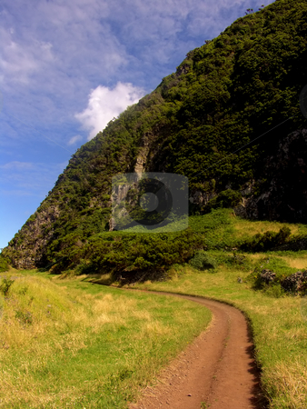 Road stock photo, Azores road on the mountains by Rui Vale de Sousa