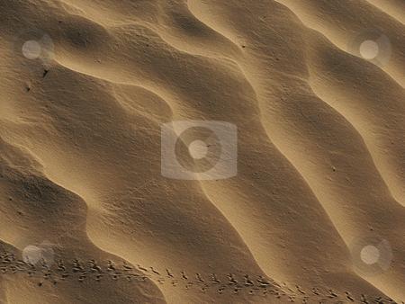 Sand stock photo, Sand details by Rui Vale de Sousa