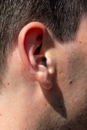 Ear stock photo, Closeup of a caucasian man ear with some hair by Rui Vale de Sousa