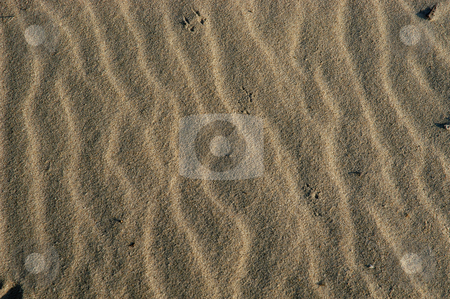 Sand stock photo, Sand details by Rui Vale de Sousa