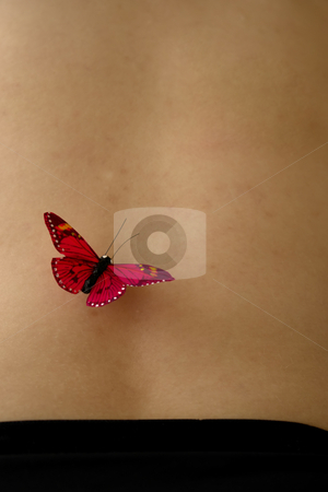 Butterfly stock photo, Butterfly on woman skin by Rui Vale de Sousa