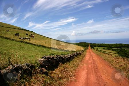 Road stock photo, Azores landscape by Rui Vale de Sousa