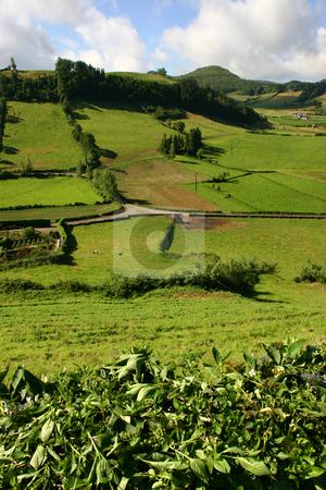 Fields stock photo, Azores fields by Rui Vale de Sousa
