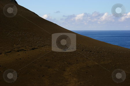 Mountain stock photo, Coast mountain by Rui Vale de Sousa