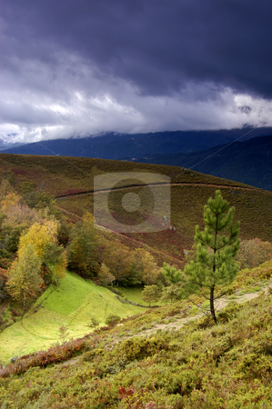 Autumn stock photo, Autumn landscape in the north of portugal by Rui Vale de Sousa