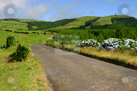 Road stock photo, Azores montains by Rui Vale de Sousa