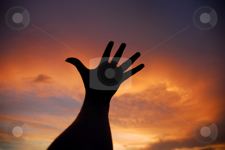Hand stock photo, Open human hand in the sunset colors by Rui Vale de Sousa