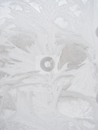 Frost winter window stock photo, Winter frost window with the ornate crystals by Sergej Razvodovskij