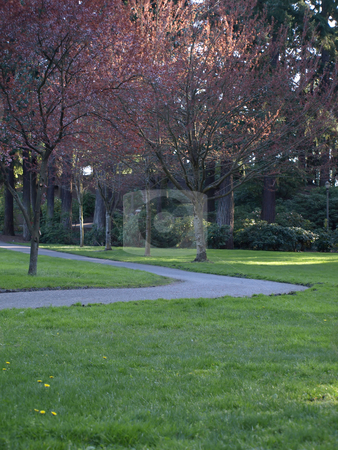 Park Pathway stock photo, A bend in a walkway through a park in the late afternoon. by Robert Gebbie