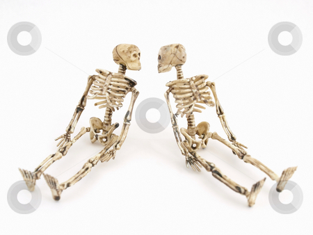 Skeletal Remains stock photo, Two skeleton figures in sitting position, isolated against a white background. by Robert Gebbie