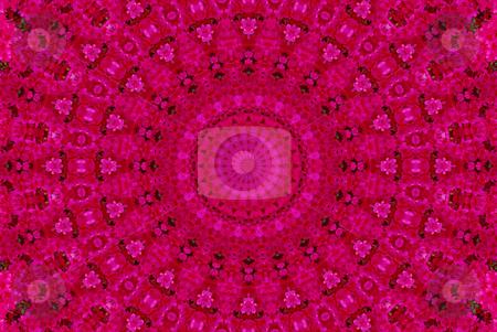 Azekea Abstract stock photo, Abstract created from a photo of an azalea bush by Sandra Fann