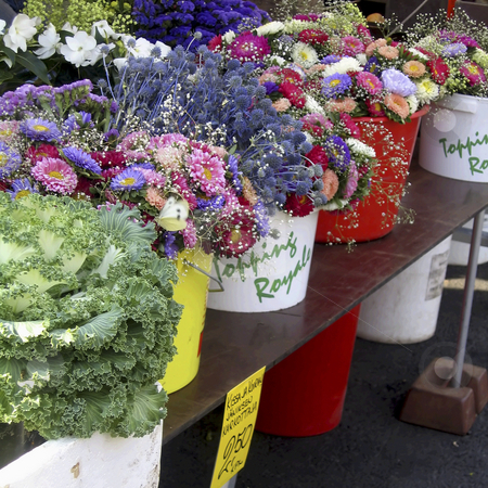 Flower and vegetable market stock photo, Flower and vegetable market in Rauma, Finland by Alessandro Rizzolli