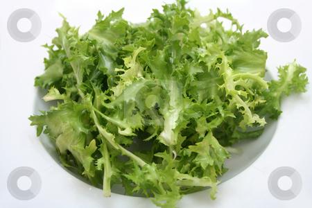 Frisee stock photo, Fresh salad by Yvonne Bogdanski
