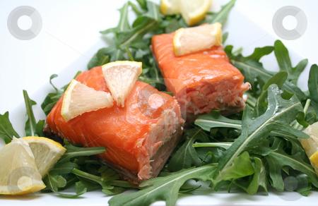 Salmon stock photo, Fresh salmon by Yvonne Bogdanski