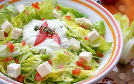 Fresh salad stock photo, Fresh salad with cheese by Yvonne Bogdanski