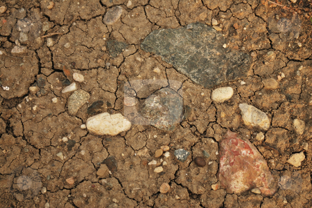 Land Texture stock photo, Shot of a dry land with many cracks and rocks by Tudor Antonel adrian