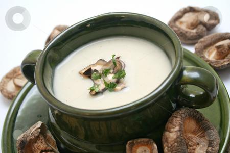 Fresh soup stock photo, Fresh soup of mushrooms by Yvonne Bogdanski