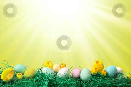 Easter Holiday Image With Chicks Eggs and Grass stock photo, Fun Easter Holiday Image With Chicks Eggs and Grass Against Starburst Pattern Background by Katrina Brown