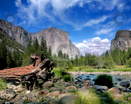 El Capitan View in Yosemite Nation Park stock photo, El Capitan View in Yosemite Nation Park on a Beautiful Sunny Day by Katrina Brown