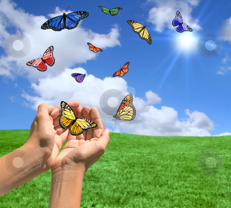 Happy Bright Landscape WIth Butterflies stock photo, Happy Bright Landscape WIth Butterflies Being Released by Katrina Brown