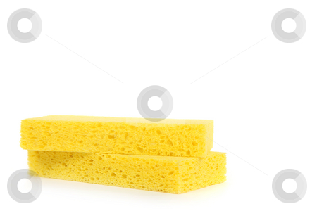 2 Yellow Sponges on White Background stock photo, 2 Yellow Sponges on White Background With Copy Space by Katrina Brown