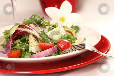 Healthy Salad on a Red Plate stock photo, Healthy Salad on a Plate With Focus on Tomatoes and Cucumbers by Katrina Brown