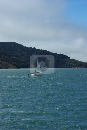 Sailing San Francisco Bay stock photo, Small sailboat on a sunny day sailing on San Francisco Bay by Lynn Bendickson
