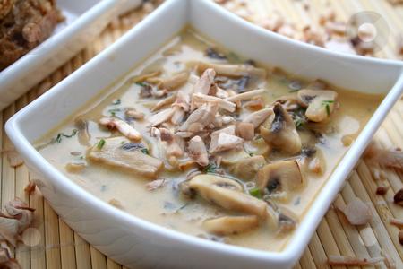 Soup of mushrooms stock photo, Soup of mushrooms by Yvonne Bogdanski