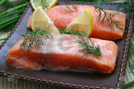Fresh salmon stock photo, Fresh salmon by Yvonne Bogdanski