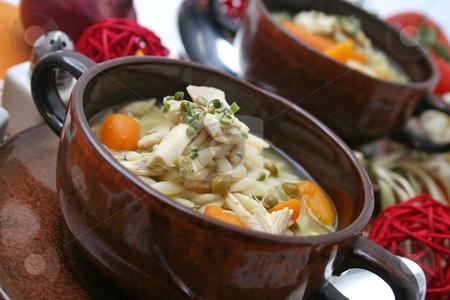 Fresh stew stock photo, Fresh stew by Yvonne Bogdanski