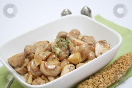 Mushrooms stock photo, Mushrooms by Yvonne Bogdanski