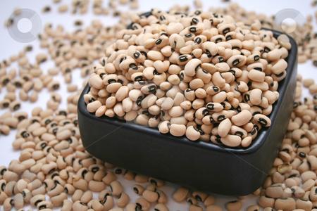 Eye-Beans stock photo, Eye-Beans by Yvonne Bogdanski