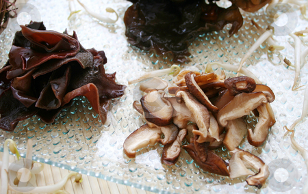 Asian mushrooms stock photo, Asian mushrooms by Yvonne Bogdanski