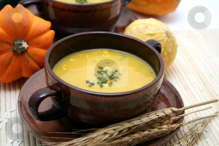 Fresh soup stock photo, Fresh soup of pumpkins by Yvonne Bogdanski