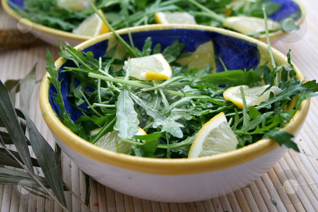 Rucola stock photo,  by Yvonne Bogdanski