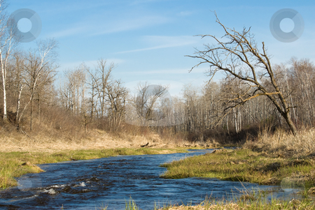 Flowing Creek stock photo, A fast flowing creek is running rapidly across the land by Richard Nelson