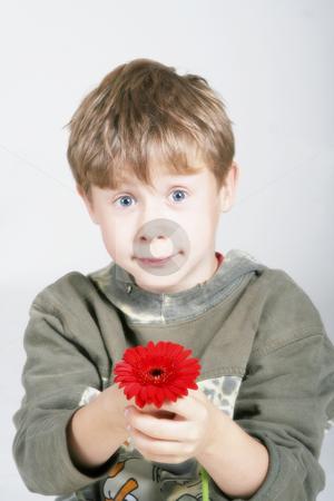 Sweet boy stock photo, Studio by Yvonne Bogdanski