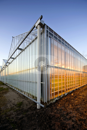 Glasshouse at dusk stock photo, The exterior glass fascade of a huge glasshouse by Corepics VOF