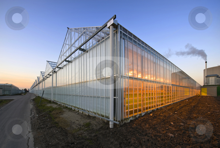 Glasshouse at dusk stock photo, The exterior glass fascade of a huge glasshouse with heating system and generator by Corepics VOF