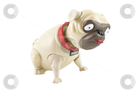 Bobble-head toy pug dog stock photo, Bobble-head plastic toy Pug dog, isolated on a white packground. by Steve Carroll