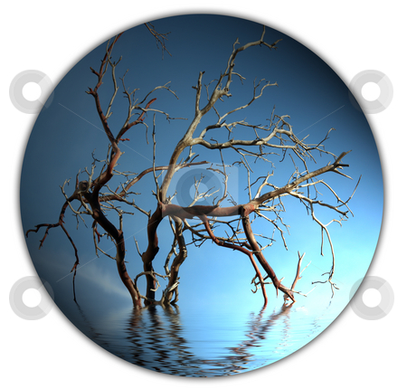 Bare tree branch button stock photo, Bare tree branch in water isolated button on white background by Stacy Barnett