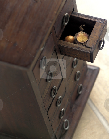 Seed in Chest Still Life stock photo, Still Life photograph of germinated Macadamia seed in a chest of drawers. by Robert Clark