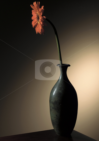 Flower in Vase Still Life stock photo, Still life photograph of a flower in a vase. by Robert Clark