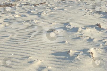 Beach  stock photo, Sand beach landscape by Laura Smith