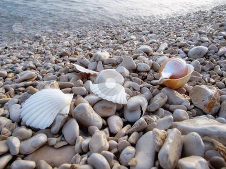 Pebble beach stock photo, Closeup on details on the pebble beach somewhere on the Adriatic coastline by Sinisa Botas