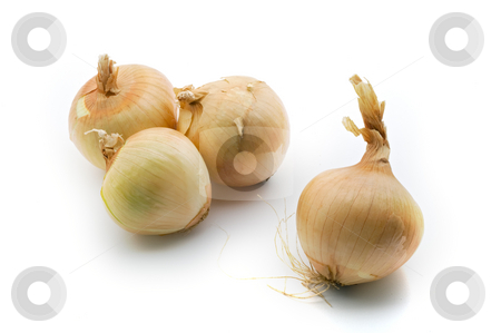 Onions stock photo, Group of onions isolated on white background by Noam Armonn