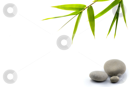 Zen background stock photo, Bamboo leavs and three stones isolated on white by Noam Armonn