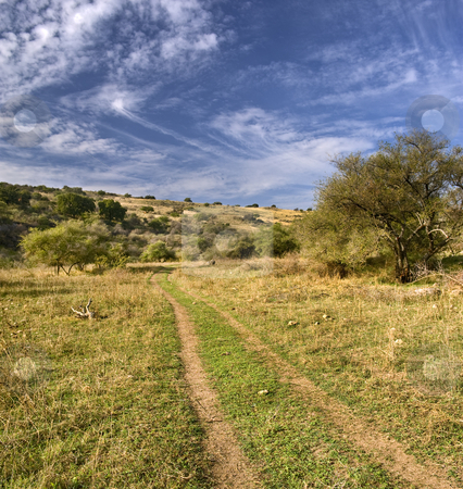 Path in a valley stock photo, Lonley path in a valley in vadi nachal amud, Galilee Isreal by Noam Armonn