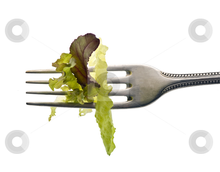 Lettuce leaves on fork stock photo, Various lettuce leaves on fork isolated on white by Noam Armonn